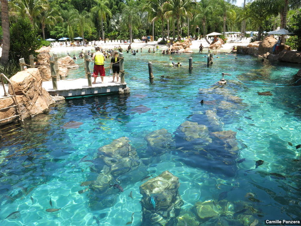 Discovery-cove