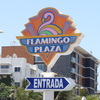Plaza-flamingo