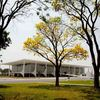 Palacio-do-planalto