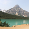 Waterfowl-lake