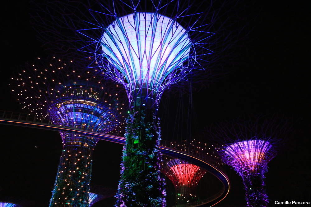 ... Gardens By The Bay ...