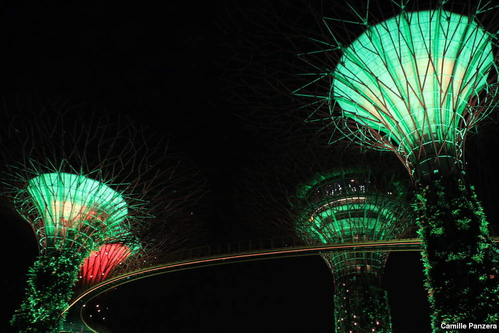 ... Gardens By The Bay