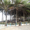 Barraca-do-beach-park